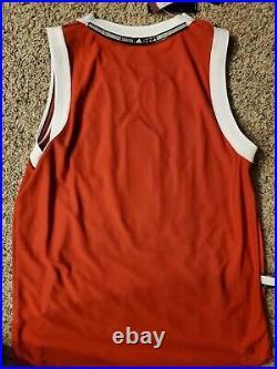 Derrick Rose Jersey HWC Rare Chicago Bulls